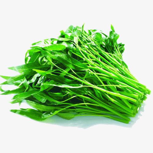 好吃的有机蔬菜批发