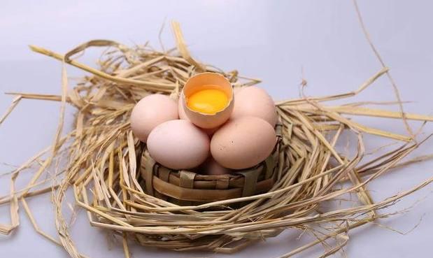 宁德优质的虫子土鸡蛋多少钱