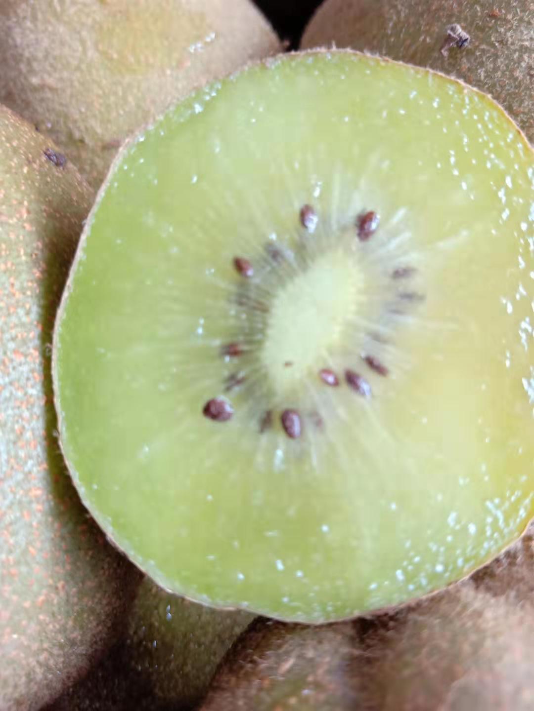 绵阳正品绿色水果怎么样