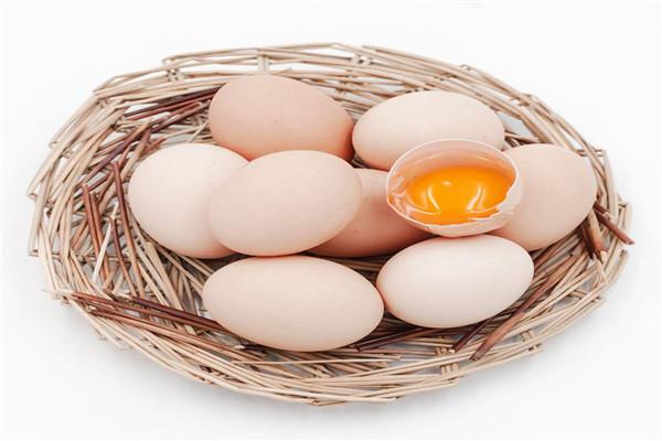 吴忠哪里有土鸡蛋加工