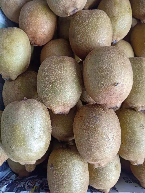 天津哪里有綠色水果怎么樣