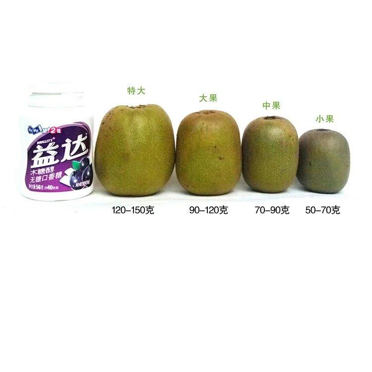 天津哪里有绿色水果电话是多少