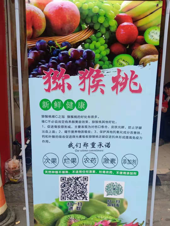 金昌优质的绿色水果