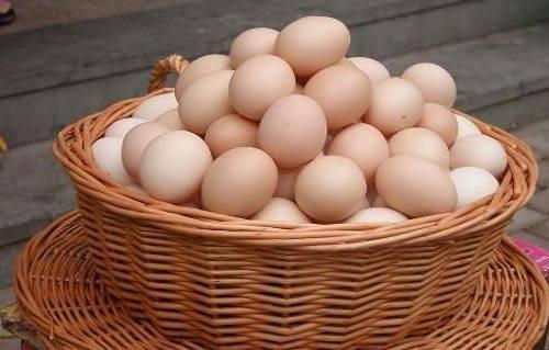 商丘优质的土鸡蛋加工