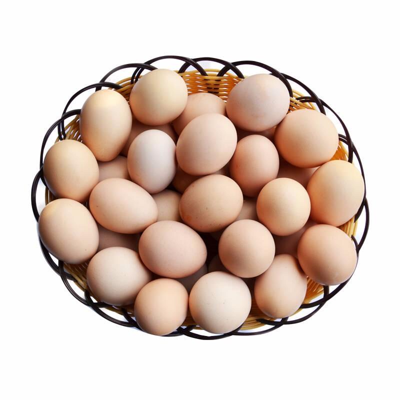 广元优质的虫子土鸡蛋哪家好
